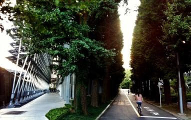 Environmental Energy Innovation Building, Tokyo Institute Technology 14