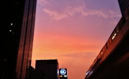 Hot night in Shimbashi 1 shiodome 2