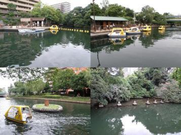 Water park in Koto-ku, Tokyo.