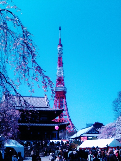 22. Tokyo Tower temple cherry blossom