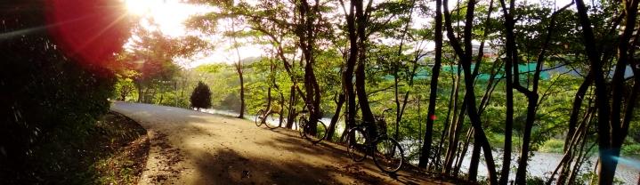 Bikes on Hanami River