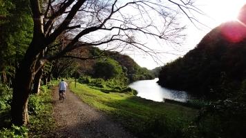 Hanami River Chiba 9 sunny path bikr