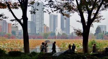 21. Ueno marsh people umbrella
