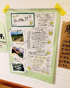 asagaya-beer-workshop-beer-chart