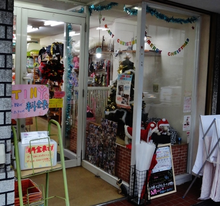 Nakano shinbashi pet store xmas