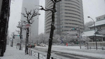 11 - Atago green hills snow Tokyo