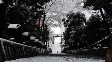13 - Atago shrine stairs snow Tokyo