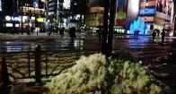 16 - Ginza snowbank street corner