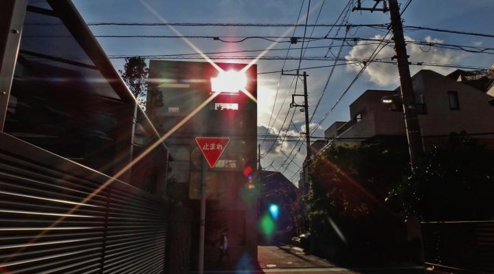 Sou Fujimoto House H Tokoy 5 sun