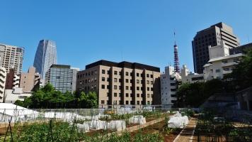 Mori Trust Garden TORA4 farm