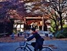 Koenji temple girl bicycle zoom