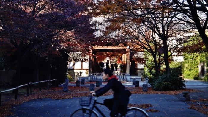 Koenji temple girl bicycle