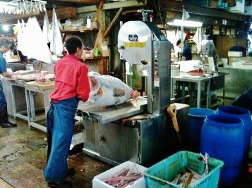 Tsukiji fish market frozen tuna buzzsaw