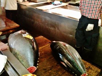Tsukiji fish market tuna
