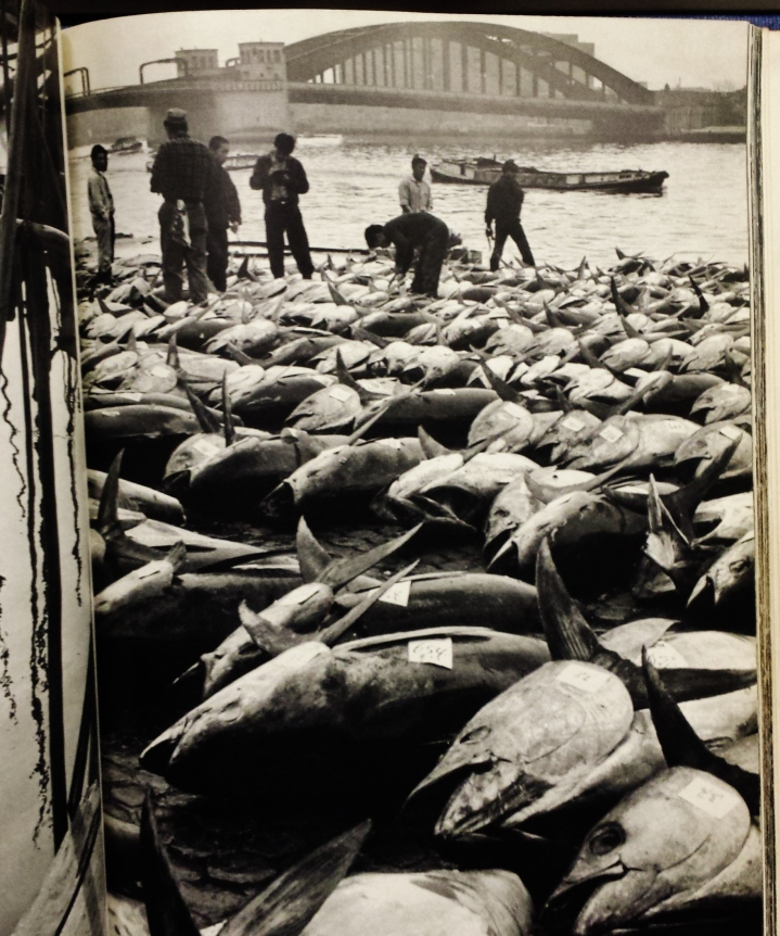 Tsukiji fish markey 1960s Tokyo