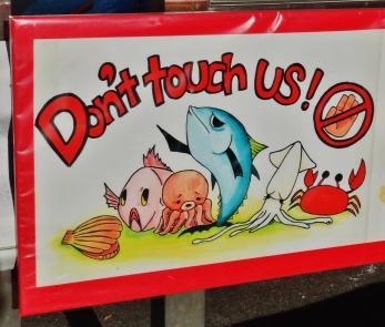 Tsukiji market visit do not touch fish