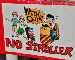 Tsukiji market visit no strollers