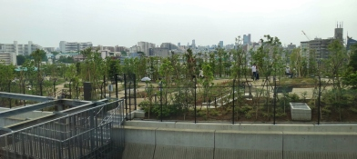Meguro Sky Garden viewed from Cross Air Tower
