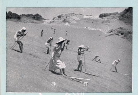 Tateyama brochure sand skiing detail