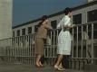 Late Autumn Ozu 1960 rooftop women Tokyo