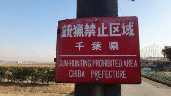 No gun hunting