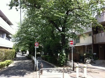 Jiyugaoka old canal / river, now a 'green road' park path.