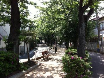 """Green road"", formerly a river in Jiyugaoka, Tokyo."