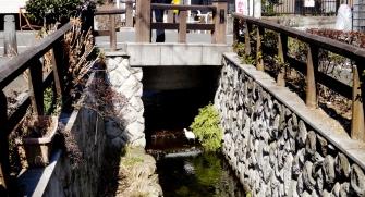Senzoku Nagare stream bird bridge Tokyo