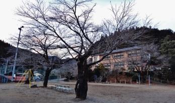 Former Minamikawa Elementary School Saitama (1)