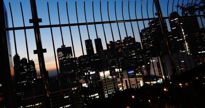 park-hyatt-and-tokyo-metropolitan-building-dusk
