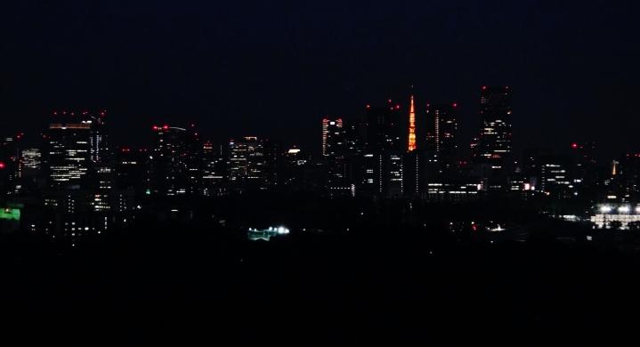 tokyo-tower-from-takashimaya-rooftop