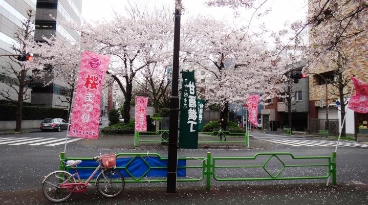 a view of cherry trees sakura Ningyocho Tokyo