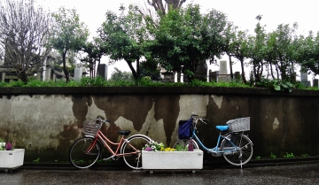IN BLOG - Yanaka cemetery Tokyo rain bikes at rest