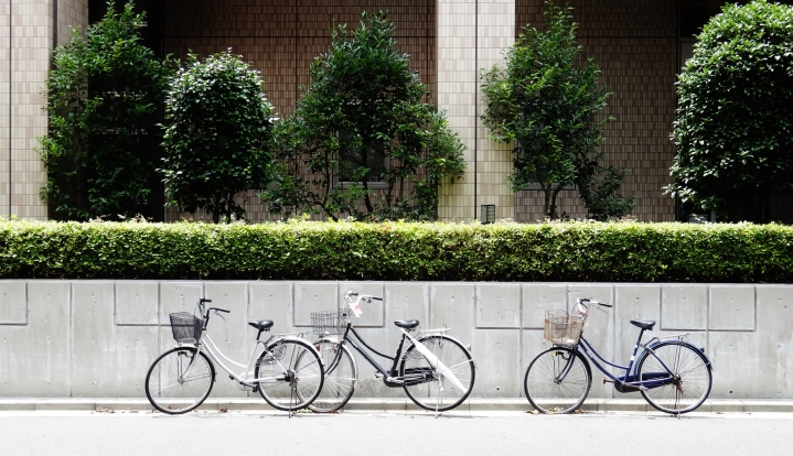 Tokyo bikes at rest wall and trees