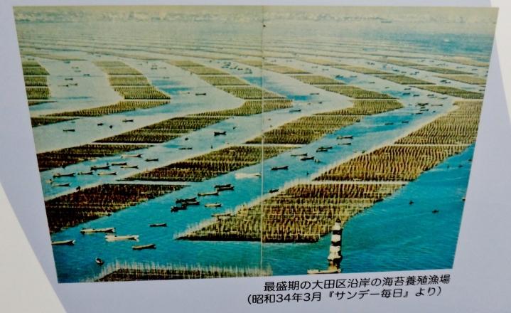 Seaweed Nori Farming Ota-ku coast Tokyo Bay 1959