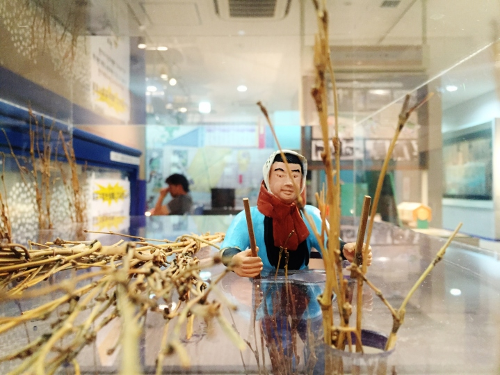 nori seaweed farming takehibi bamboo