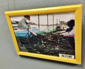 seaweed nori laver nets