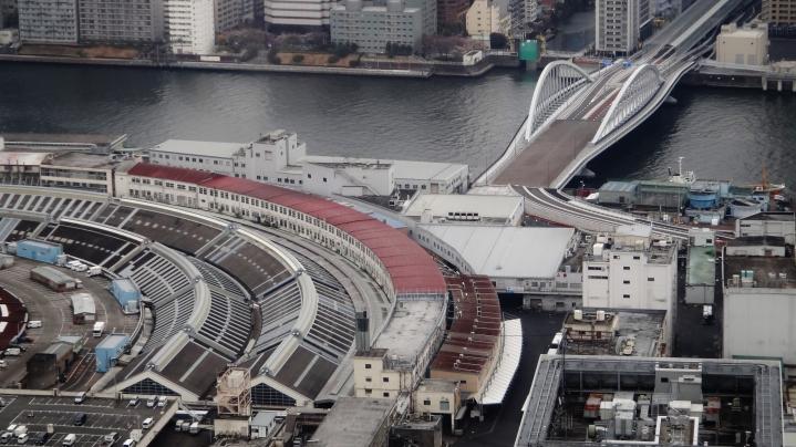Tsukiji market curved shape 2017
